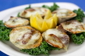 Baltimore Oysters