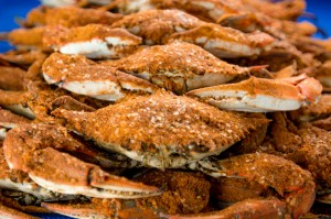 baltimore steamed crabs