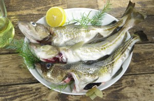 4 Healthy Ways to Prepare Your Next Fish Dish